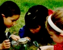 Summer Day Camps - Nature Discovery